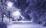 115791-winter-wonderland-background-2304x1296-for-pc