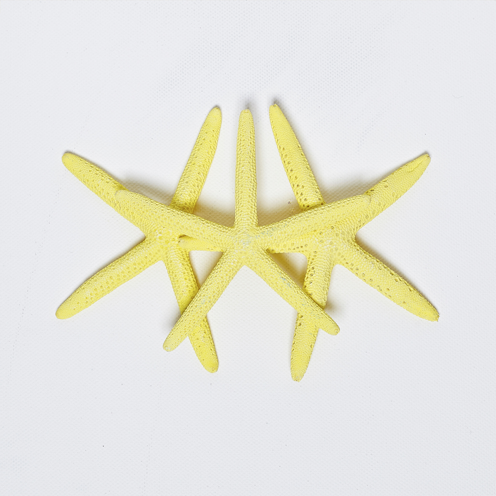 GIANT YELLOW STARFISH - PACK OF 24