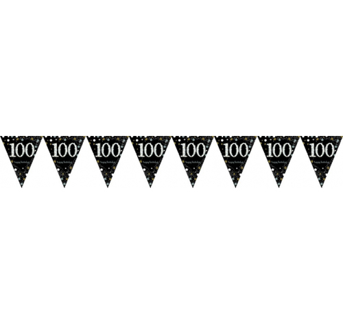 100TH BIRTHDAY PENNANT FLAG BUNTING - GOLD, BLACK & SILVER