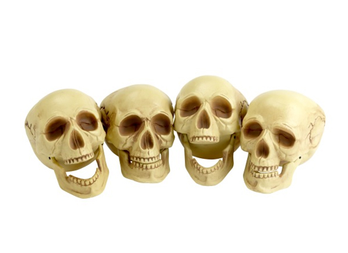 REALISTIC LOOKING SKULLS - PACK OF 4