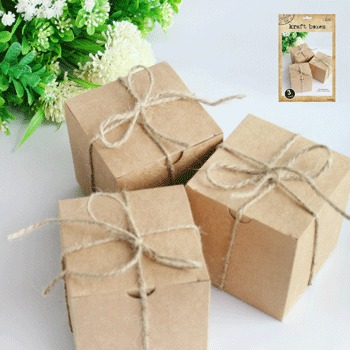 NATURAL KRAFT TREAT BOXES - PACK OF 3