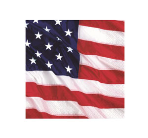 AMERICAN PARTY COCKTAIL NAPKINS - PACK OF 16