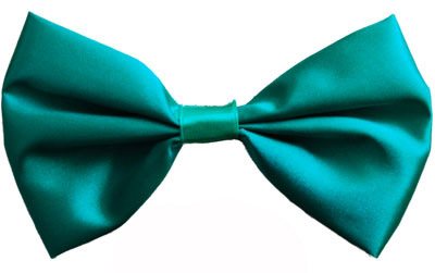 Image of Green Satin Bow Tie