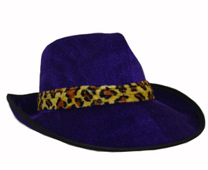 PURPLE VELVET TYPE HAT