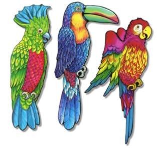 CUTOUT - 3 EXOTIC BIRDS