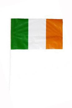 Image of Irish Flag  Hand Held
