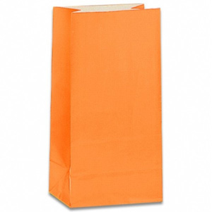 PAPER LOOT BAGS - ORANGE - PACK OF 12