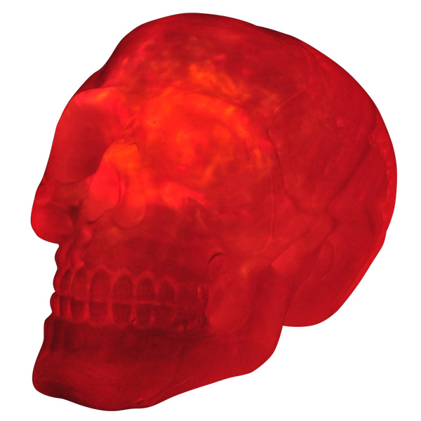 Image of Fire & Ice Light Up Skull With Sound