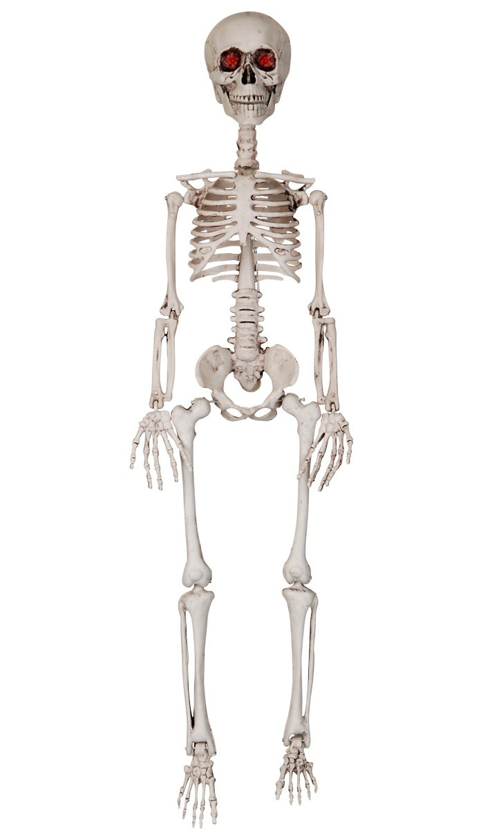 REALISTIC MOTION ACTVATED TALKING SKELETON WITH MOVING MOUTH