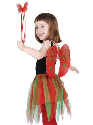 CHRISTMAS FAIRY SET - 2 - 5 YEARS