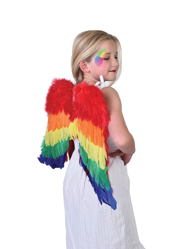FAIRY FANTASY MULTI COLOURED DOWN RAINBOW WINGS