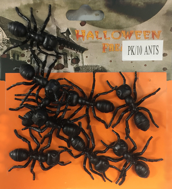 HORROR BLACK BULL ANTS - PACK OF 10