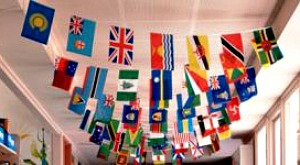 INTERNATIONAL STRING OF FLAGS - 4M LONG