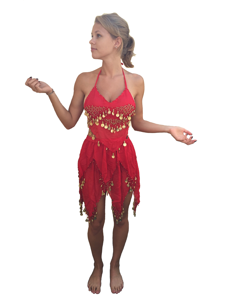 BOLLYWOOD/ BELLY DANCER COSTUME - Available on 2 Colours