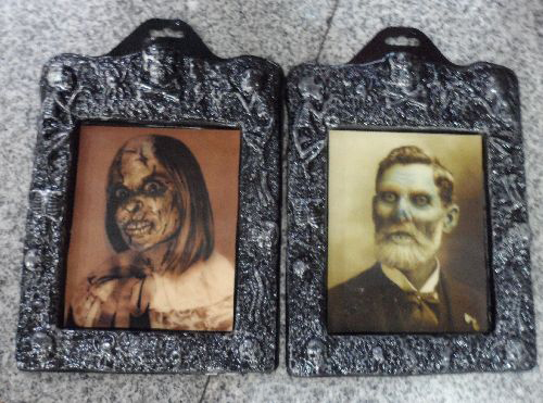 HAUNTED HOLOGRAPHIC PICTURE PHOTO FRAME PORTRAITS - SMALL